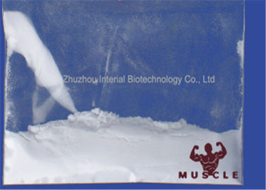 China 99.5% Superdrol Powder Drostanolone Steroid Methyldrostanolone For Muscle Enhancement fábrica