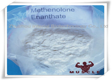 China 99% Purity Methenolone Enanthate/Primobolan Depot Muscle Building Steroids CAS 303-42-4 fábrica